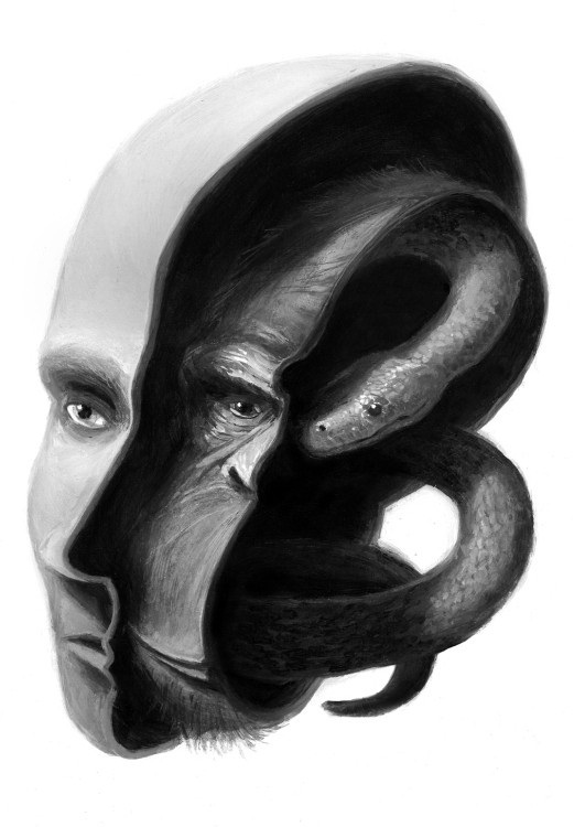 joe_nose-brain